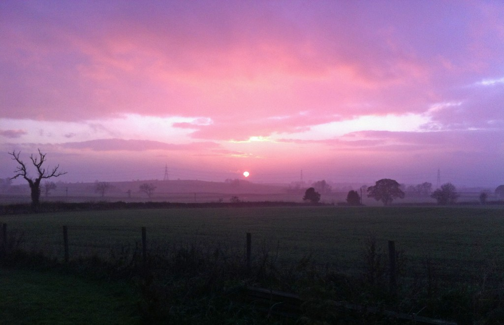 Pink Sky Pylons