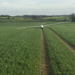 A Glider in a Field